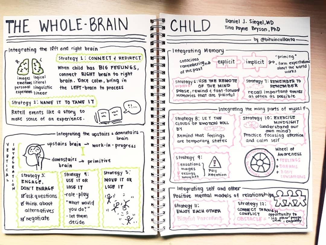 The Whole Brain Child Image