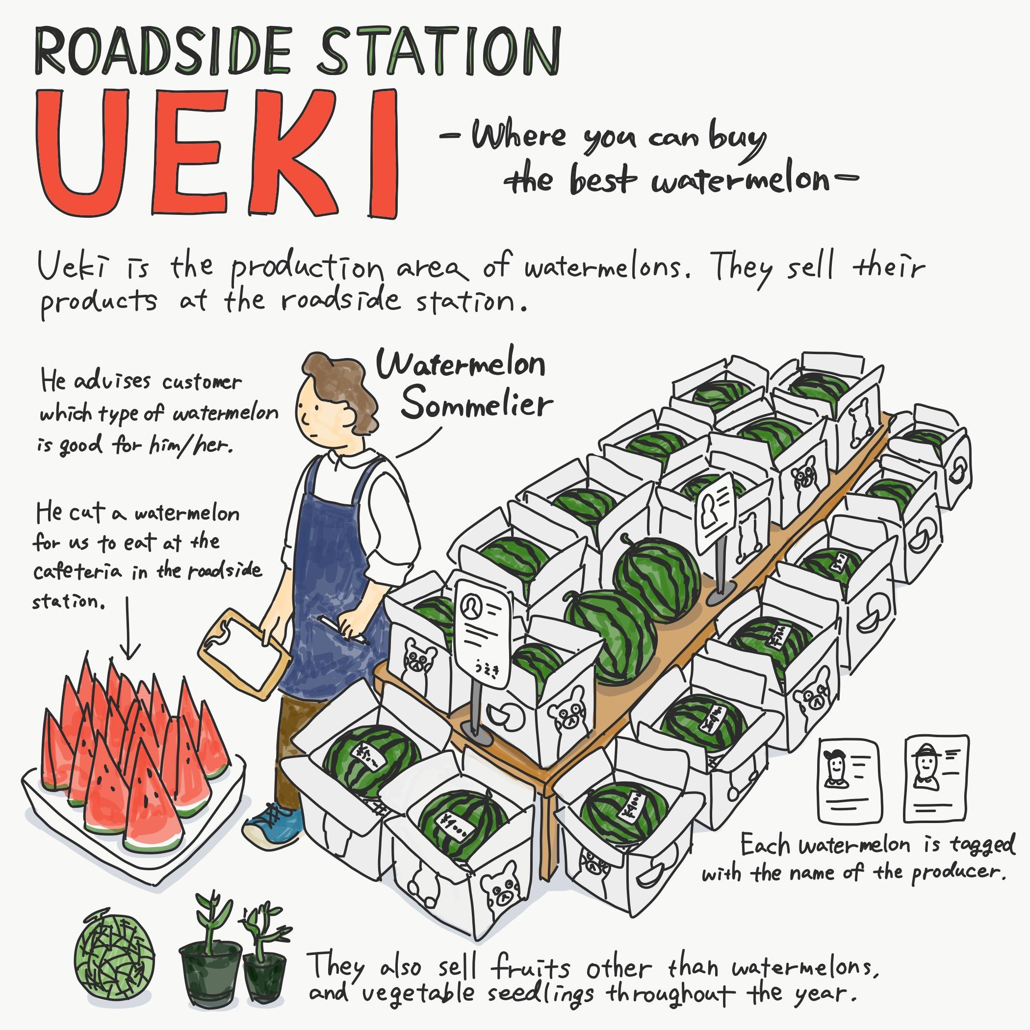 Roadside Station UEKI Image