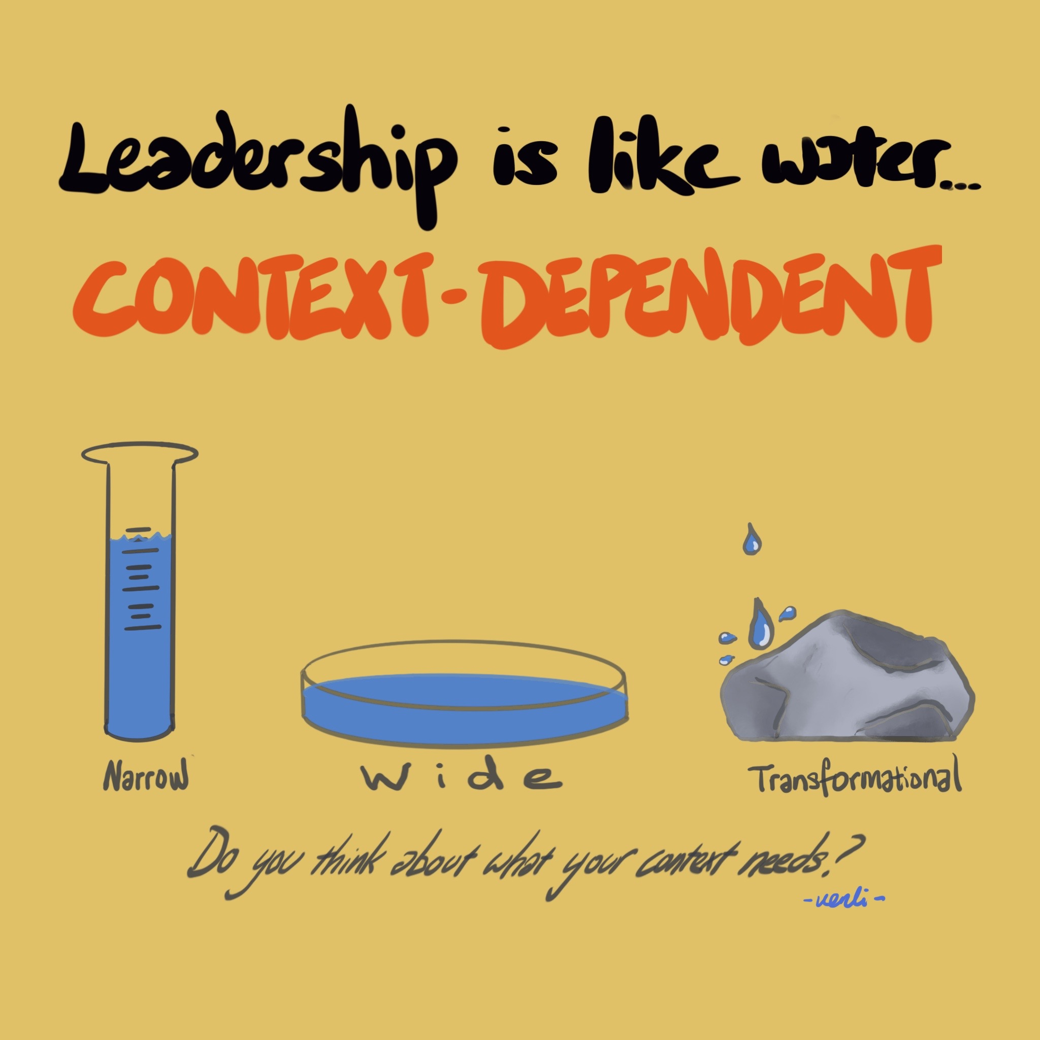 Leadership is context dependent Image (1/1)